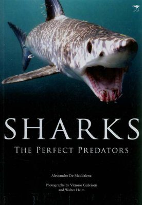 Sharks: The Perfect Predators