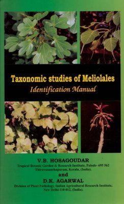 Taxonomic Studies of Meliolales