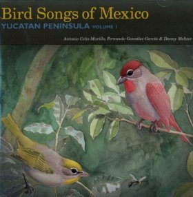 Bird Songs of Mexico: Yucatan Peninsula Volume 1