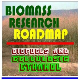 21st Century Biomass Research Roadmap-Biofuels and Cellulosic Ethanol, Feedstocks, Sugars,Thermochemicals, Integrated Biorefineries, Energy Crops and Fuels, Corn, Oil, Pulp, Paper