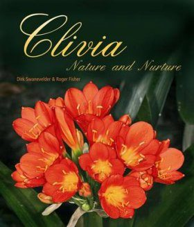 Clivia: Nature and Nurture