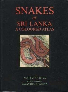 Snakes of Sri Lanka