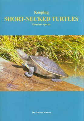 Keeping Short-Necked Turtles