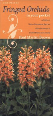 Fringed Orchids in Your Pocket