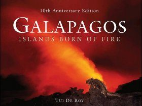 Galapagos: Islands Born of Fire (10th Anniversary Edition)