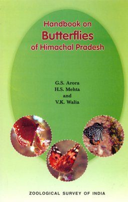 Handbook on Butterflies of Himachal Pradesh