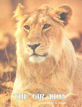 The Gir Lion: Panthera Leo-persica