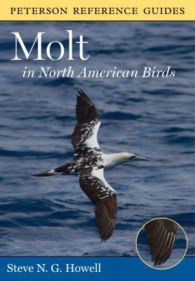 Molt in North American Birds