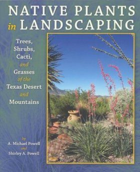 Native Plants in Landscaping