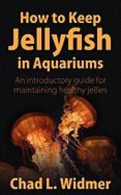 How to Keep Jellyfish in Aquariums