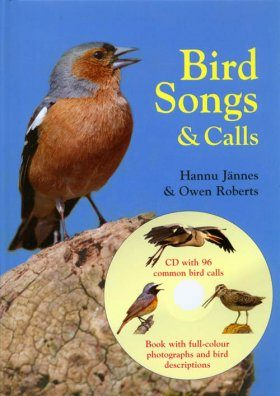 Bird Songs and Calls