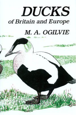 Ducks of Britain and Europe