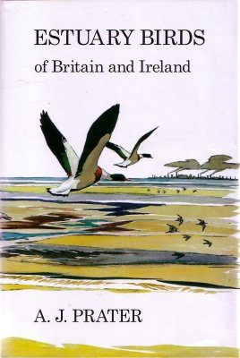 Estuary Birds of Britain and Ireland