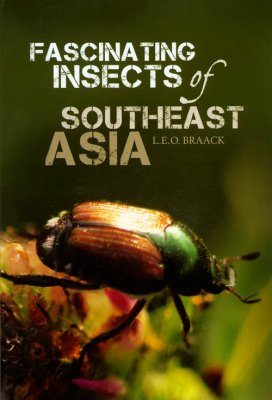 Fascinating Insects of Southeast Asia
