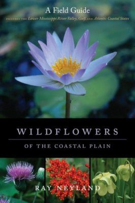 Wildflowers of the Coastal Plain