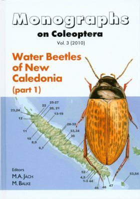 Water Beetles of New Caledonia, Part 1