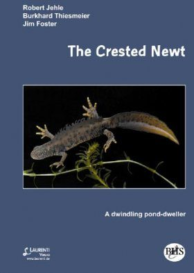 The Crested Newt