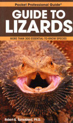 Pocket Professional Guide to Lizards