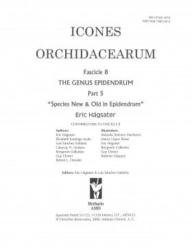 Icones Orchidacearum, Fascicle 8