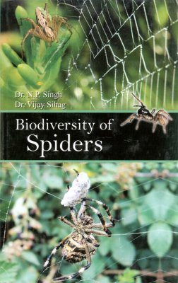 Biodiversity of Spiders