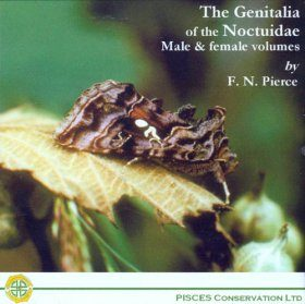 The Genitalia of the Noctuidae