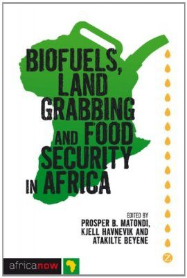 Biofuels, Land Grabbing and Food Security in Africa