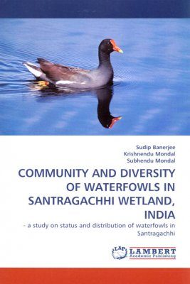 Community and Diversity of Waterfowls in Santragachhi Wetland, India