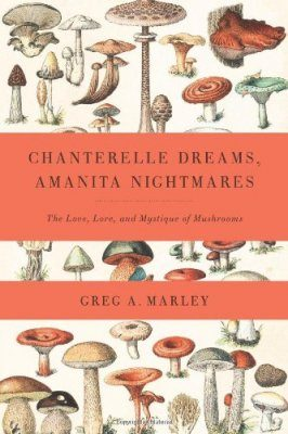 Chanterelle Dreams, Amanita Nightmares