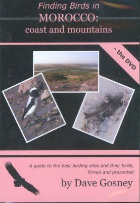 Finding Birds in Morocco: Coast and Mountains - The DVD (Region 2)