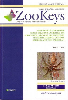 ZooKeys 105: A Revision of the Spider Genus Selenops latreille, 1819 (Arachnida, Araneae, Selenopidae) in North America, Central America and the Caribbean