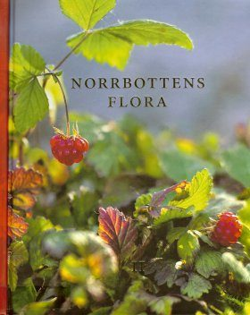 Norrbottens Flora Del 2 [The Vascular Plants in the Province of Norbotten, Volume 2]