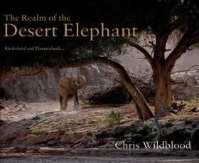 The Realm of the Desert Elephant