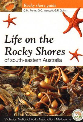Life On the Rocky Shores of South-eastern Australia