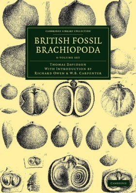 British Fossil Brachiopoda (6-Volume Set)