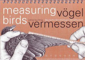 Measuring Birds / Vögel Vermessen
