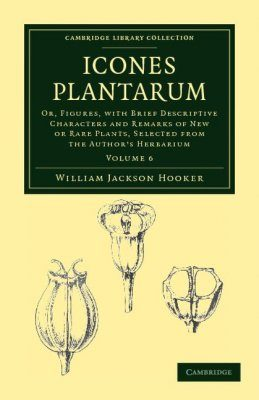 Icones Plantarum, Volume 6