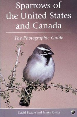 Sparrows of the United States and Canada