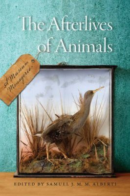 The Afterlives of Animals