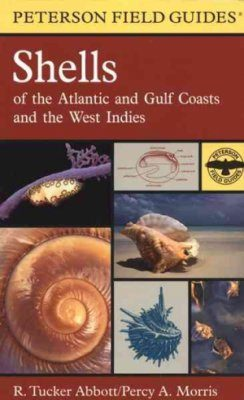 Peterson Field Guide to Shells of the Atlantic and Gulf Coasts and the West Indies