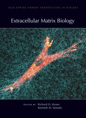 Extracellular Matrix Biology