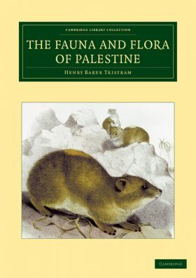 The Fauna and Flora of Palestine
