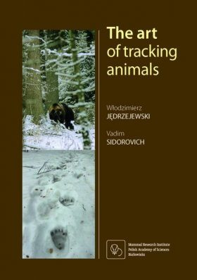 The Art of Tracking Animals