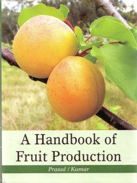 A Handbook Of Fruit Production