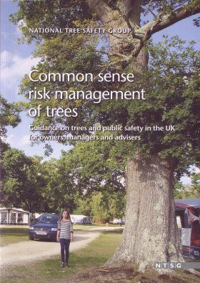 Common Sense Risk Management of Trees