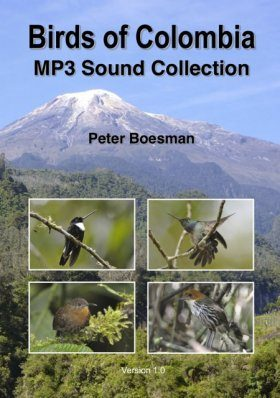 Birds of Colombia - MP3 Sound Collection