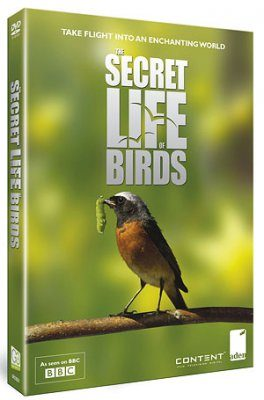 The Secret Life of Birds (Region 2)