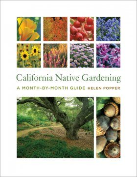 California Native Gardening