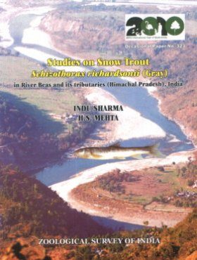Studies on Snow Trout Schizothorax Richardsonii (Gray) in River Beas and its Tributaries (Himachal Pradesh), India