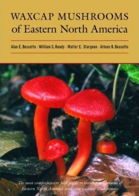 Waxcap Mushrooms of Eastern North America