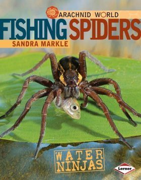 Fishing Spiders